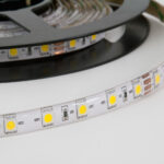 Strip LED IP65 SMD3528 14 W/m 1022L/m 6000K 24V 5mx10mm